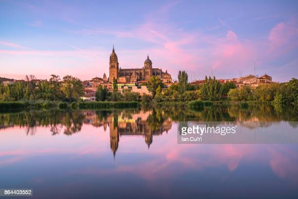 the cathedral in salamanca across the rio tormes. - サラマンカ ストックフォトと画像