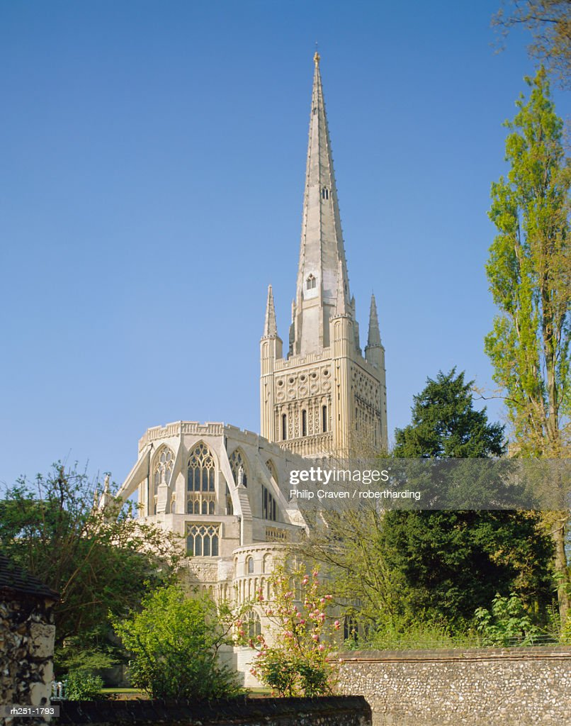 The Cathedral, Norwich, Norfolk, England, UK : Foto de stock