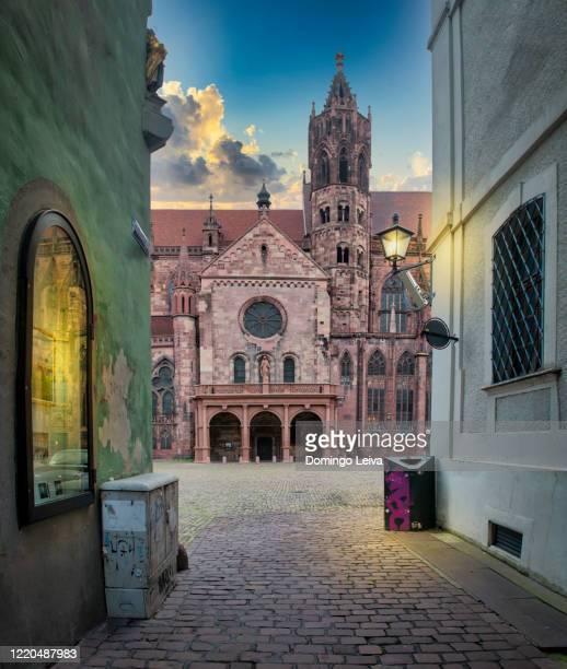 the cathedral of freiburg im breisgau, germany - フライブルク・イム・ブライスガウ ストックフォトと画像