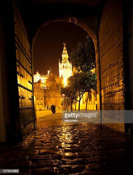 la cathédrale de séville, en espagne - seville photos et images de collection
