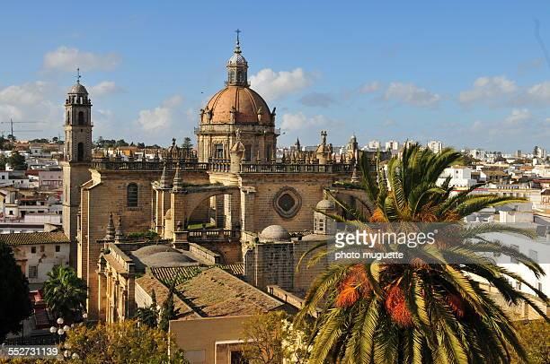 the cathedrale of jerez - jerez de la frontera stock pictures, royalty-free photos & images