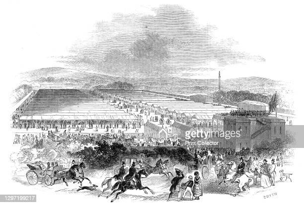 The Cattle Sheds, Royal Agricultural Society's Show, Shrewsbury, 1845. Annual show in Shropshire. 'The ground selected for the Show Yard for Stock...