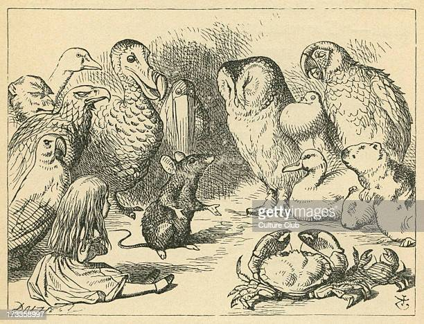 The Caucus Race and a Long Tale Lewis Carroll's book 'Alice's Adventures in Wonderland' Illustrated by John Tenniel The mouse lectures on William the...