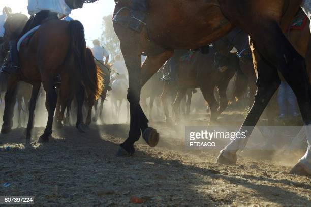 The Cavalcata Sardatraditional horses races Sedilo Ardia Barbagia Sardinia Italy Europe
