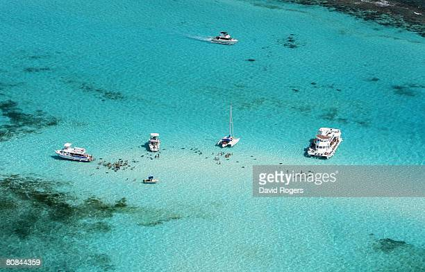 The Cayman Islands most famous attraction Stingray City and the nearby shallows know as the Sandbar provide the only natural oportunity to swim with...