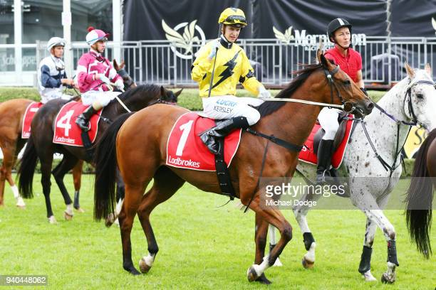 The Centaurian ridden by Fred Kersley returns to scale after winning the Robert Fitzgerald Memorial Nepean Glass Screens at Mornington Racecourse on...