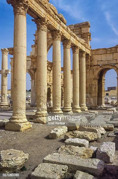 the central colonnade at palmyra, syria - palmyra stockfoto's en -beelden