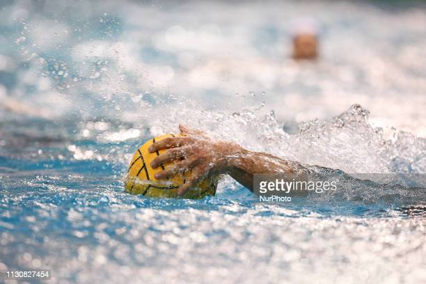 The Champions League water polo match between Pro Recco and Barceloneta on march 15 2019 at Piscina Monumentale in Turin Italy Pro Recco won 83 over...