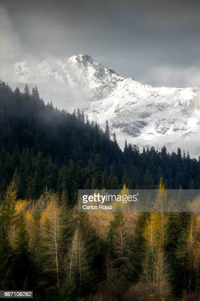 the changing of seasons - anchorage alaska stock photos and pictures