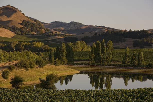 Destination: Napa Valley Wine Region