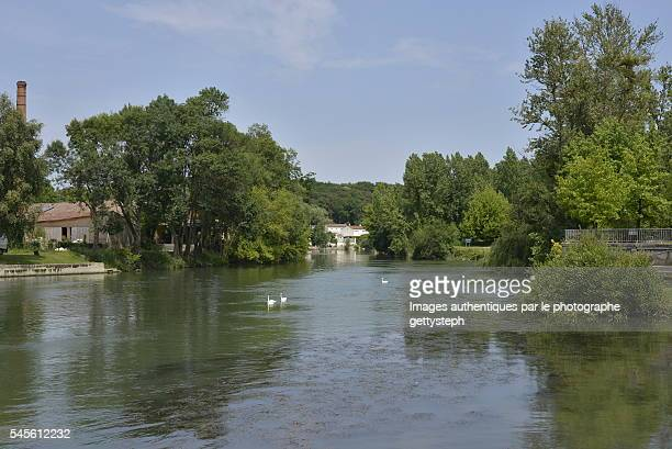 The charente River in middle nature