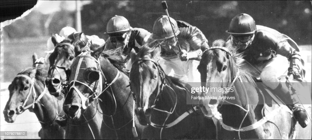 """The charge of the Light Brigade in the Nasrullah Handicap at Randwick yesterday. Bold Gent (John Marshall), on the outside, arrives in the last stride to beat Rose Link (Ron Quinton), with the """"masked"""" Mondo Man (Wayne Harris) third. : News Photo"""