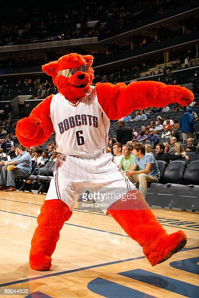 The Charlotte Bobcats mascot Rufus performs during the game between the Atlanta Hawks and the Charlotte Bobcats on November 6 2009 at Time Warner...