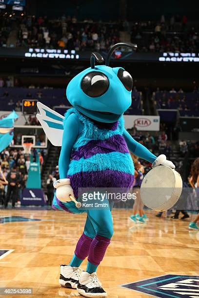 The Charlotte Hornets mascot performs during a game against the New Orleans Pelicans at the Time Warner Cable Arena on January 7 2015 in Charlotte...