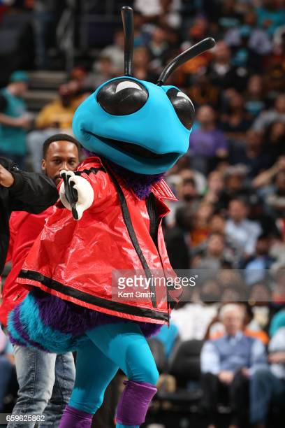 The Charlotte Hornets mascot performs during a game against the Cleveland Cavaliers on March 24 2017 at the Spectrum Center in Charlotte North...