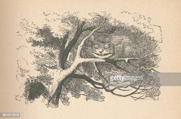 The Cheshire Cat begins to fade away its his smile the last to go 1889 Lewis Carrolls Alice in Wonderland as illustrated by John Tenniel From Alices...