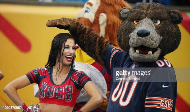 The Chicago Bears mascot uses his paw to keep the rain off a Tampa Bay Buccaneers cheerleader during the NFL Pro Bowl at Camping World Stadium in...