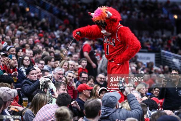 The Chicago Bulls mascot 'Benny the Bull' entertains the crowd during the NBA game between Detroit Pistons and Chicago Bulls at the United Center on...