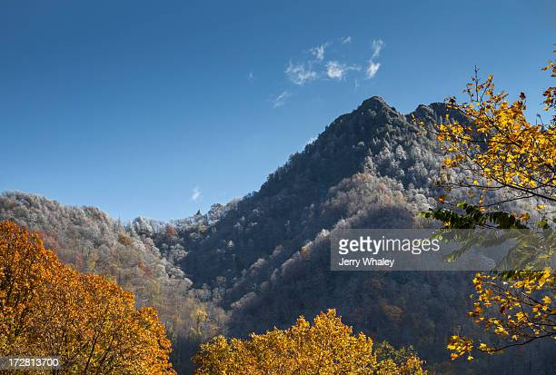 the chimneys in autumn from newfound gap road - newfound gap stock pictures, royalty-free photos & images
