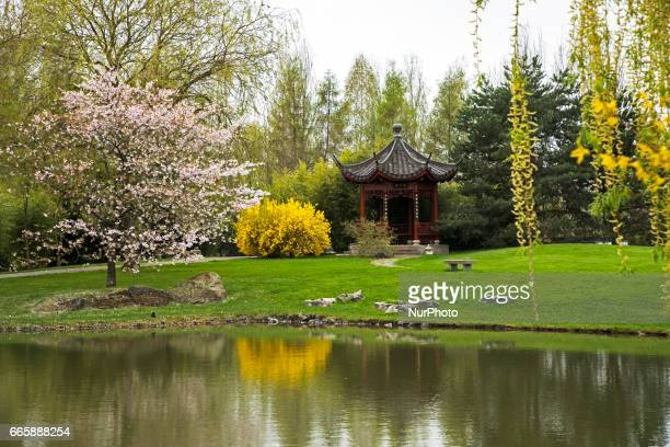 The Chinese garden is pictured during a press preview of the IGA 2017 in Berlin Germany on April 7 2017 Last arrangements are being done for the...
