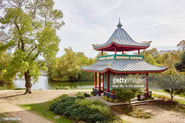 the chinese pagoda, in victoria park, london from a high angle view in autumn. - ビクトリア公園 ストックフォトと画像