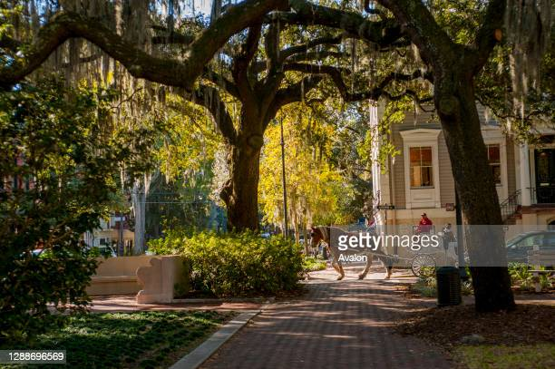The Chippewa Square in the historic district of Savannah, Georgia, USA.