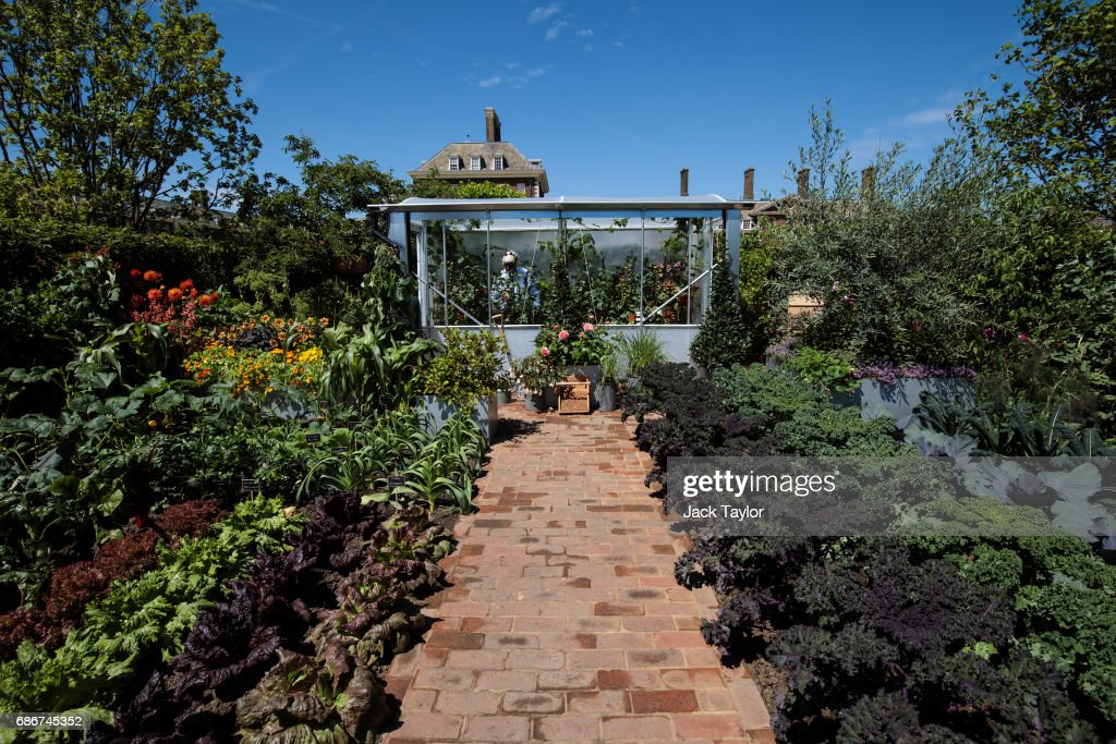 The 'Chris Evans Taste Garden' on display at the Chelsea Flower Show on May 22, 2017 in London, England. The prestigious Chelsea Flower Show, held annually since 1913 in the Royal Hospital Chelsea grounds, is open to the public from the 23rd to the 27th of May, 2017.