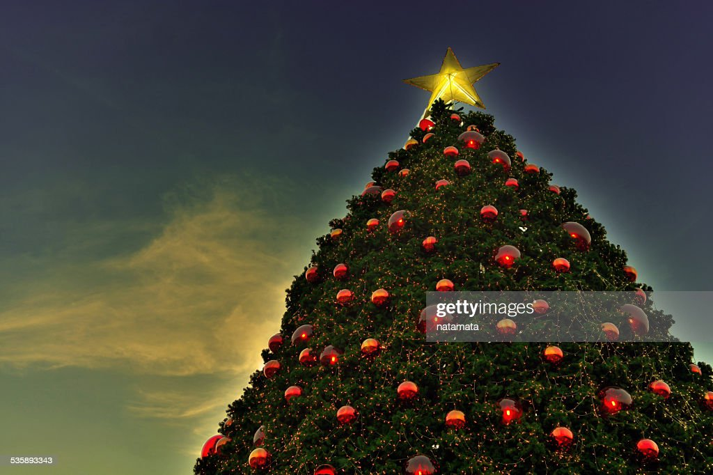 The Christmas tree is gradually : Stock Photo