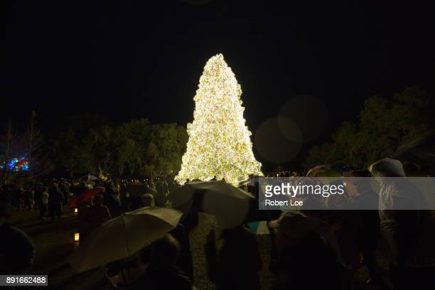 The Christmas Tree of the Night of a Thousand Candles