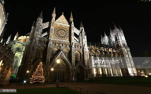 The Christmas Tree which was blessed and switched on by The Very Reverend Dr John Hall at Westminster Abbey on December 4 2012 in London England