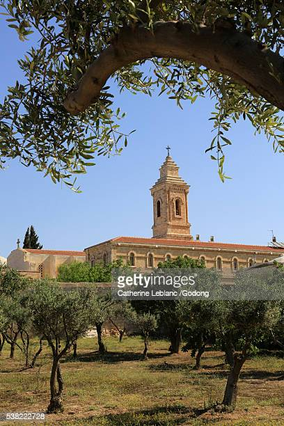 the church of pater noster on the mount of olives. - mount of olives stock photos and pictures