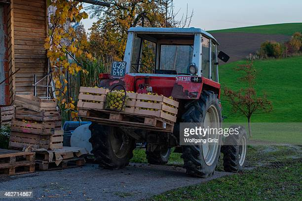 CONTENT] The Cider is also a important Product of the Austrian Innviertel here you can see the harvest of the fruits for the cider