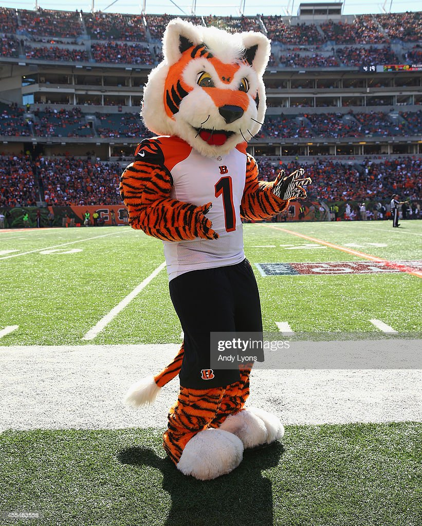 Atlanta Falcons v Cincinnati Bengals : News Photo
