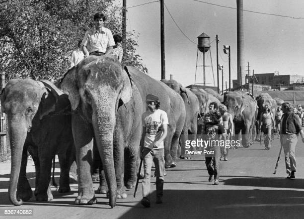 The circus has arrived A herd of 18 elephants left led the way Wednesday as the Ringling Brothers and Barnum Bailey Circus arrived in town for its...