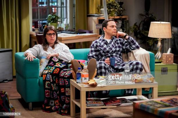 'The Citation Negation' Pictured Amy Farrah Fowler and Sheldon Cooper Sheldon and Amy are devastated after learning from a Russian paper that...