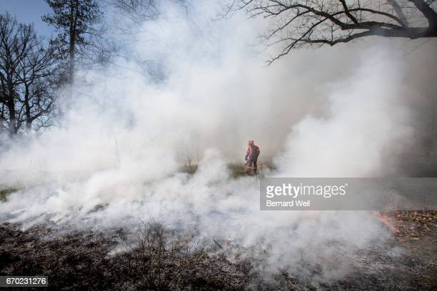 TORONTO ON DECEMBER 31 The City conducted a prescribed burn at Lambton Arena as part of the City's longterm management plan to protect and sustain...