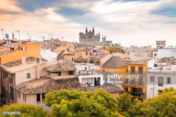 the city of palma de mallorca with the cathedral. - islas baleares fotografías e imágenes de stock