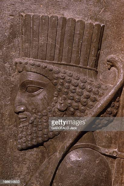 The City Of Persepolis In Iran En Iran un portrait achéménide d'un garde perse en basrelief issu du palais des cent colonnes de Persépolis