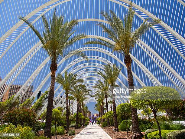 The Ciudad de las Artes y las Ciensias with Umbracle and Winter Gardens