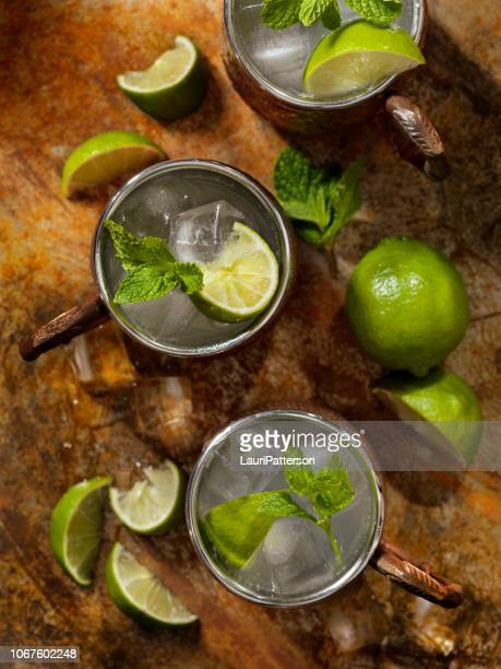 the classic moscow mule cocktail - crushed leaves stock pictures, royalty-free photos & images