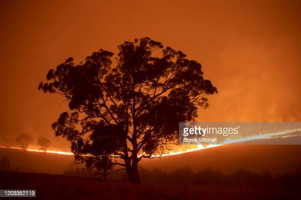 The Clear Range Fire burns near Bredbo North shortly before over running the property of Lawrence and Clair Cowie on February 01 2020 near Canberra...