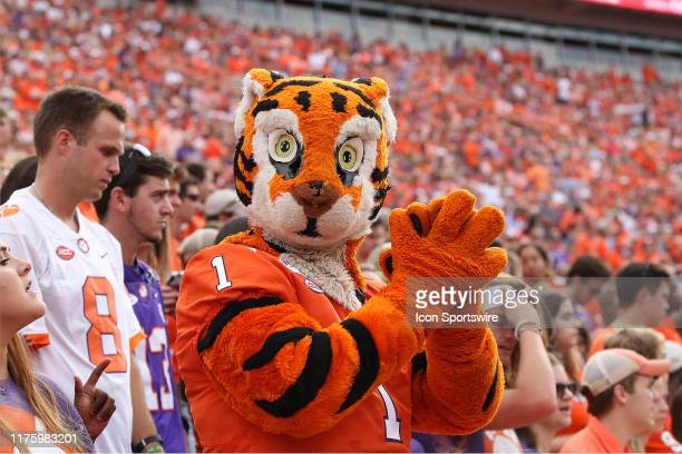 The Clemson mascot, 'The Tiger' during a college football game between Florida State Seminoles and the Clemson Tigers on October 12 at Clemson...