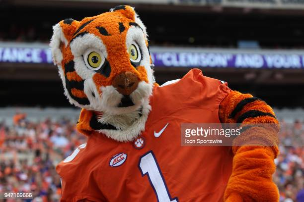 The Clemson mascot The Tigeron the sidelines during the Clemson Spring Football game at Clemson Memorial Stadium on April 14 2018 in Clemson SC