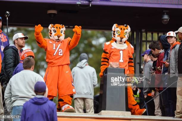 The Clemson Tiger mascots stand at the rock before the most exciting 25 seconds in college football Clemson Tigers run down the hill prior to the...