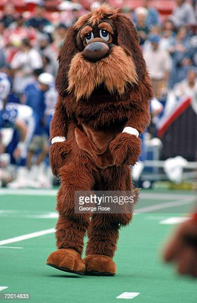 The Cleveland Browns mascot walks on the field prior to start of the 1995 NFL Pro Bowl at Aloha Stadium on February 5 1995 in Honolulu Hawaii The AFC...
