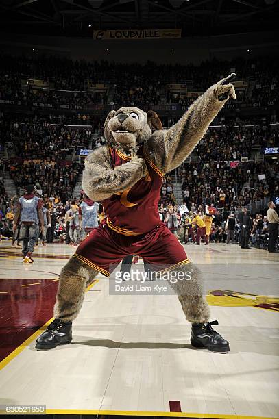 Golden State Warriors Mascot Stock Pictures, Royalty-free ...