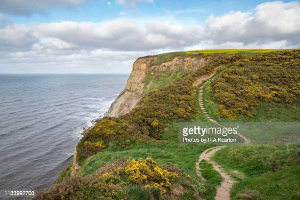 the cleveland way, north yorkshire, england - cleveland stock pictures, royalty-free photos & images