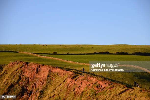 the cliff path - cumbria stock photos and pictures