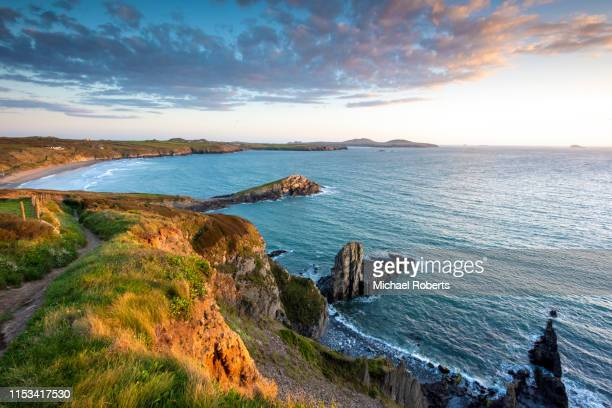 the cliffs above whitesands beach on the pembrokeshire coast path near st davids at sunset - st davids stock pictures, royalty-free photos & images