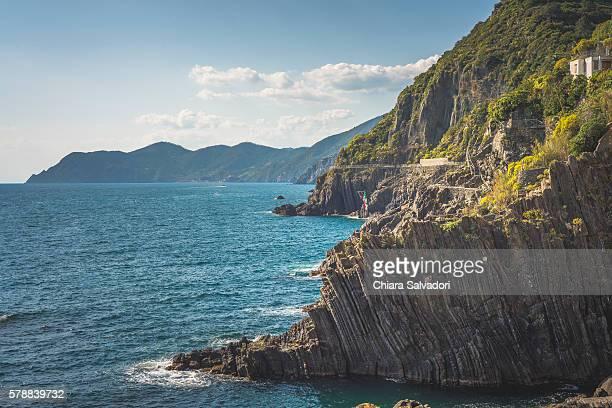 the cliffs in front of the port of riomaggiore, liguria. italy. - terrassenfeld stock-fotos und bilder